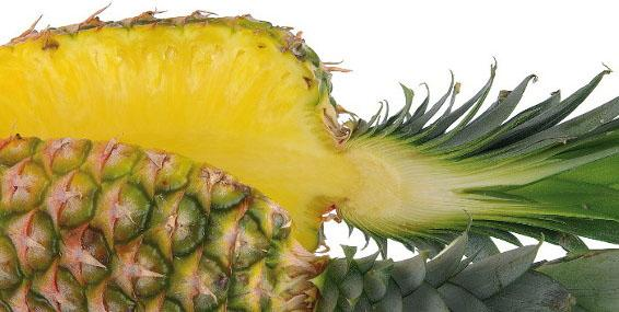 Fratelli Indelicato - Juice extraction from pineapple and tropical fruits