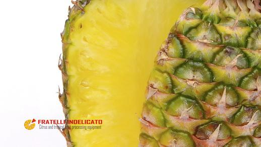 video pineapple polyfruit